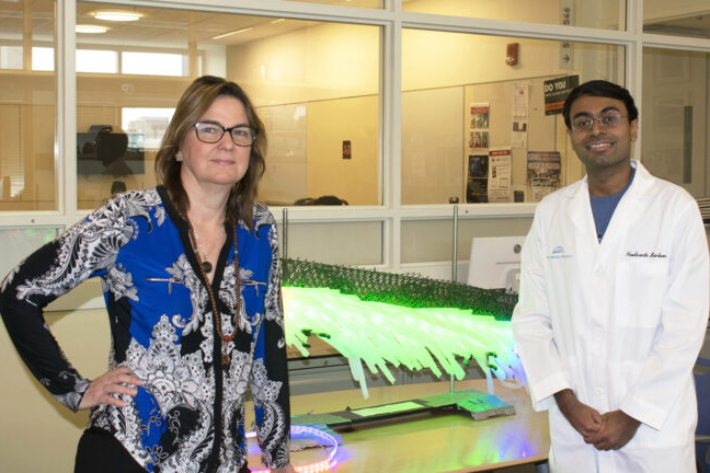 Angela Belcher, chair of MIT's Department of Biological Engineering, and Neel Bardhan, postdoctoral fellow in MIT's Koch Institute, with an oversized model of carbon nanotube probes for detecting tiny ovarian tumors. Image, Koch Institute/MIT.